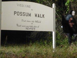 Possum walk welcome